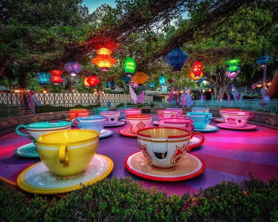 Photo of Mad Tea Party from planDisney Panelist Andres V.