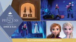 Graphic of Anna and Elsa-inspired experiences at Disney parks