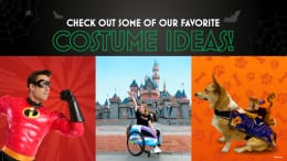 Graphic of costume ideas from shopDisney