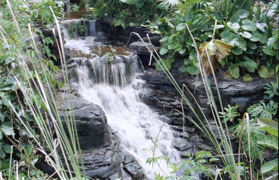 Waterfall at Disney's Animal Kingdom