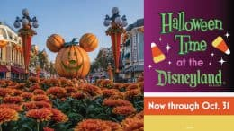 Graphic for Halloween Time at the Disneyland Resort