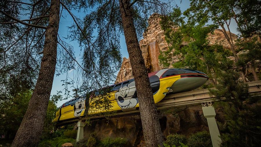 Disneyland monorail passes through the tress inside Disneyland with Matterhorn Mountain in the distance