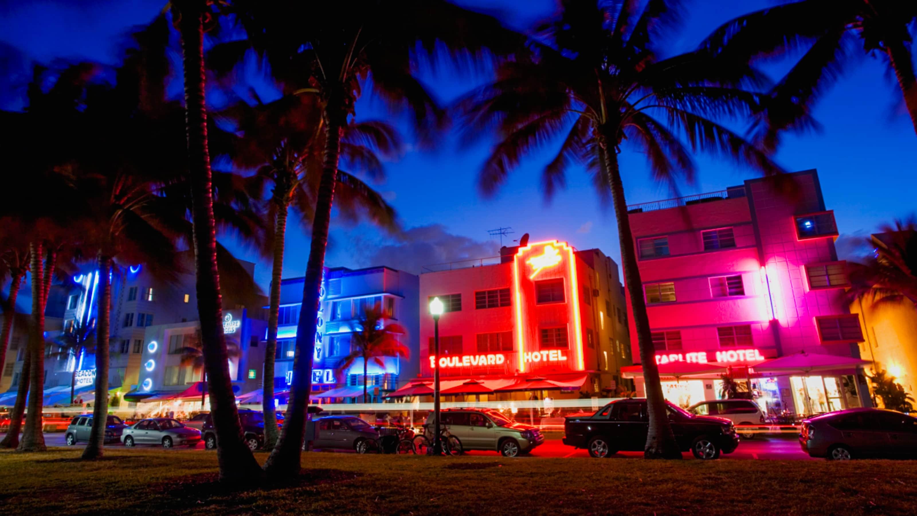 Palmeras y autos estacionados se alinean frente a una fila de hoteles de pocos pisos entre luces de neón en una noche en Miami, Florida