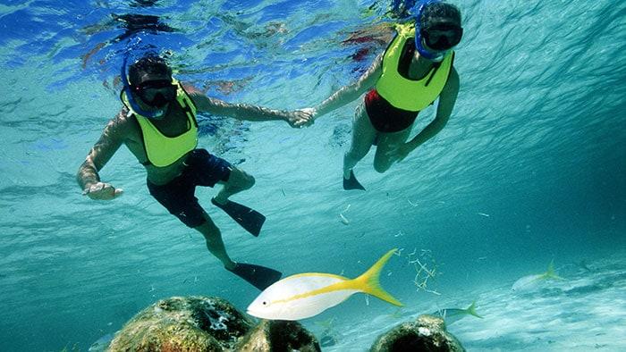 Un couple se tient la main alors qu'ils font de la plongée en scaphandre.