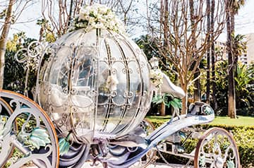 Cinderella's Coach parked on a pathway surrounded by trees