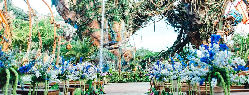 A space arranged for a wedding ceremony in front of a waterfall coming from a floating mountain in Pandora The World of Avatar