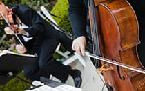 Orchestras & Bands