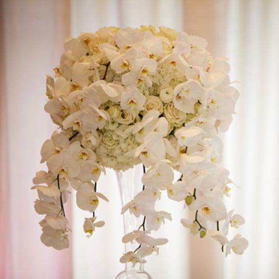 Real Fairytale Weddings Silver Spring Md: A Cinderella Inspired Wedding At Disneyland