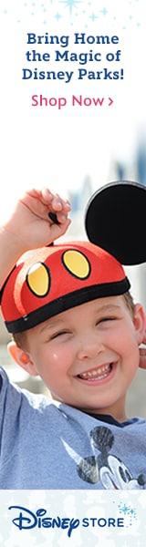 Shop the Disneystore.com