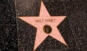 The Hollywood Walk of Fame Walt Disney star