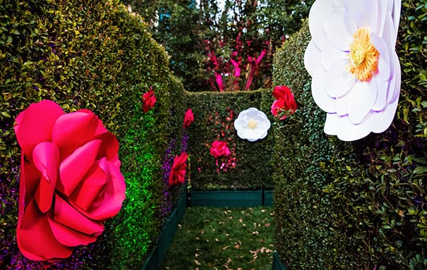 Once Attendees Have Playfully Navigated The Hedge Maze Adorned With Whimsical Flowers They Enter An Elegant English Garden Tables And Chairs Fit For A