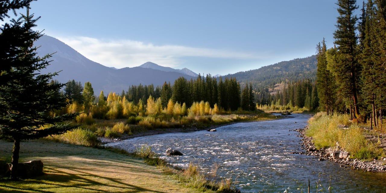 Mountains near a flowing river whose banks are lined with pine trees