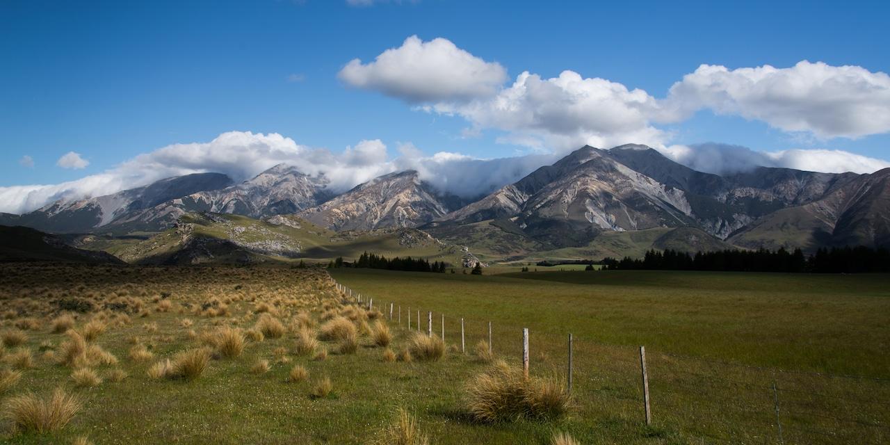 An open, grassy field near the base of a mountain range