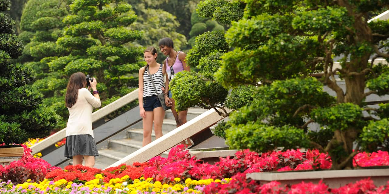 A woman takes a picture of her 2 friends standing on a stairway in a tropical garden