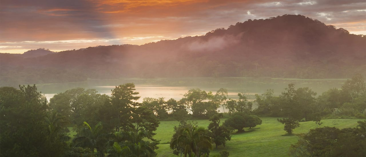 The Napo River and the Amazon Rainforest