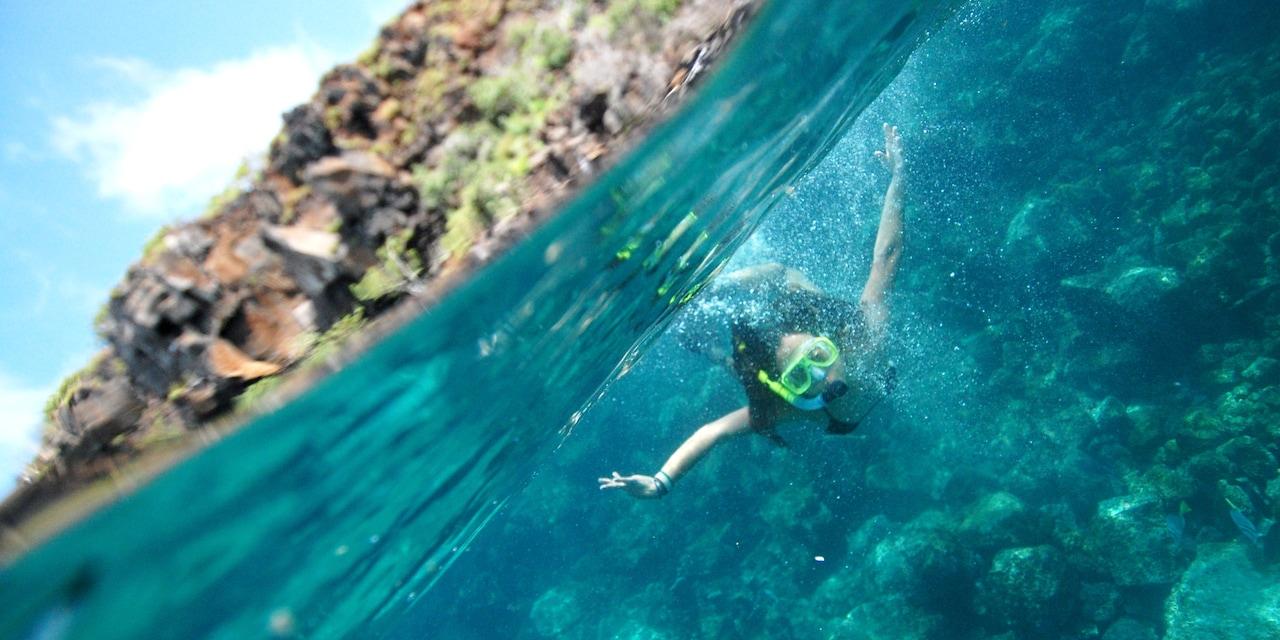 A girl snorkels underwater