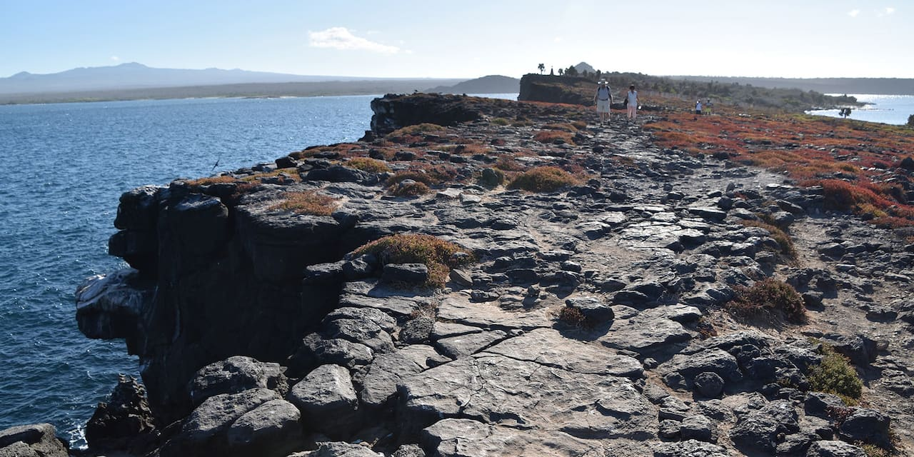Two people walking along a volcanic rocky path next to the ocean