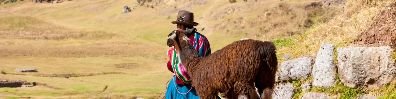 A Peruvian woman in a hat leads an alpaca down a dirt path