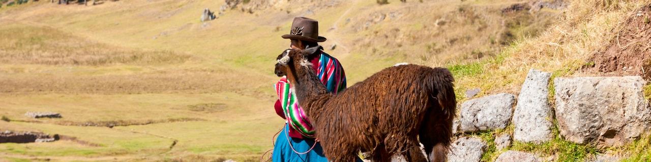 A Peruvian woman in a hat leads an alpaca down a dirt path