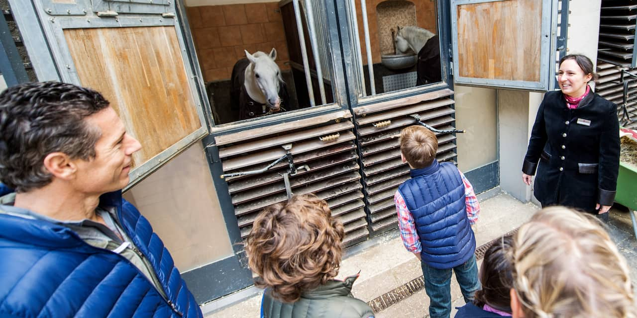 An Adventure Guide shows a family 2 horses standing in their stables