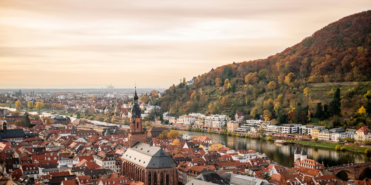 The German town of Mannheim stretches out along the river up against the base of a mountain