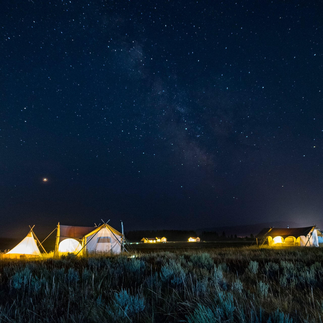 Several tents in a grassy plain lit up beneath a starry nighttime sky