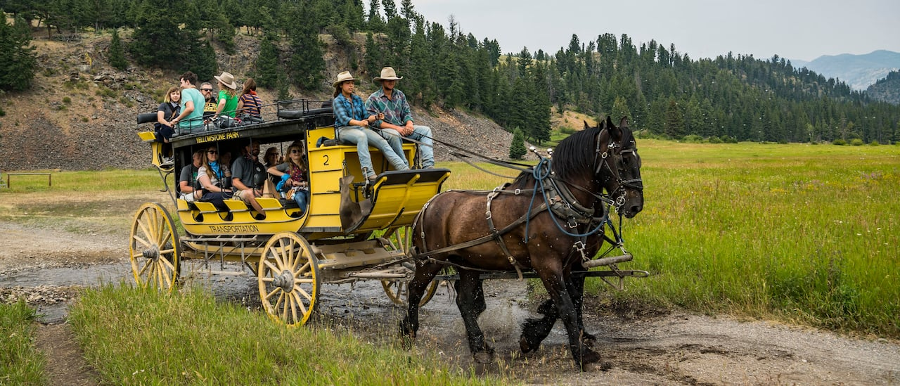 Two men drive a horse-drawn stagecoach filled with Adventurers over a trail through a grassy plain