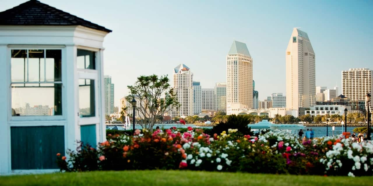 The skyline of the city of San Diego
