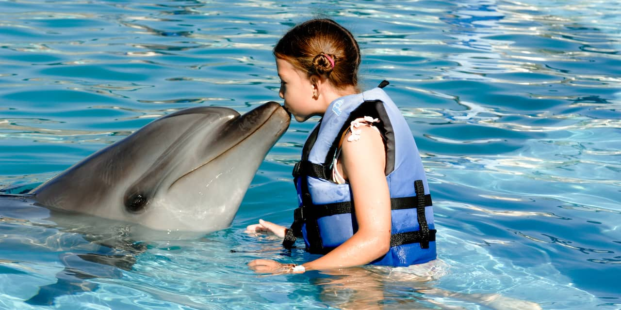 A young girl wearing a life vest gives a dolphin a kiss on its nose