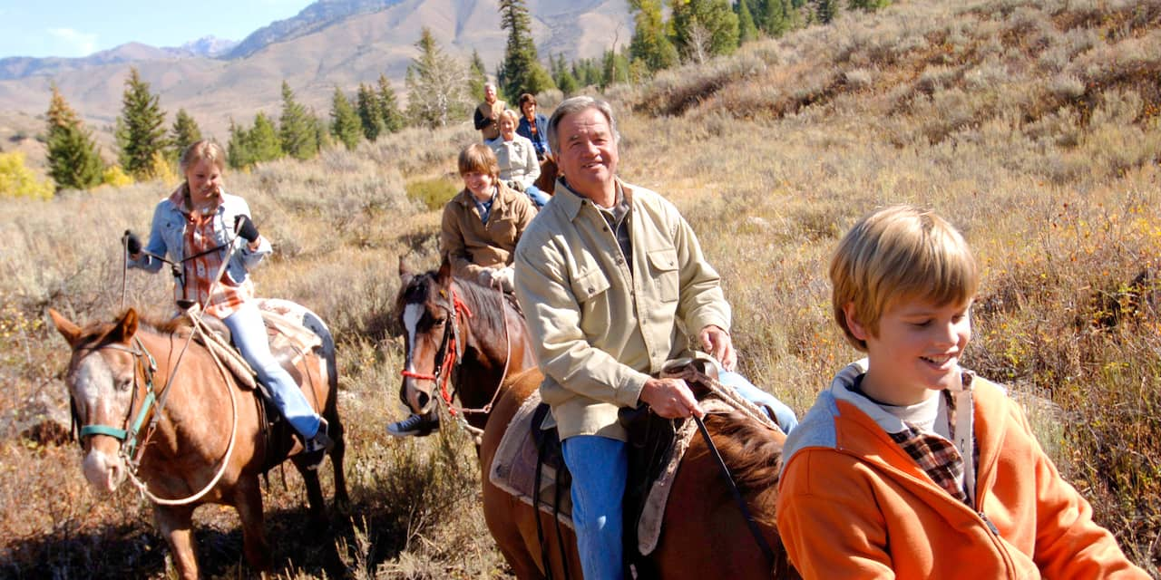 A family horseback riding in a field