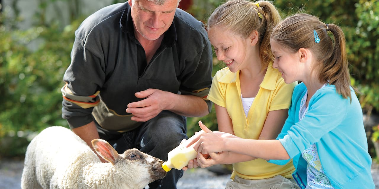 A father and his two daughters feed a lamb from a bottle at Rathbaun Farm