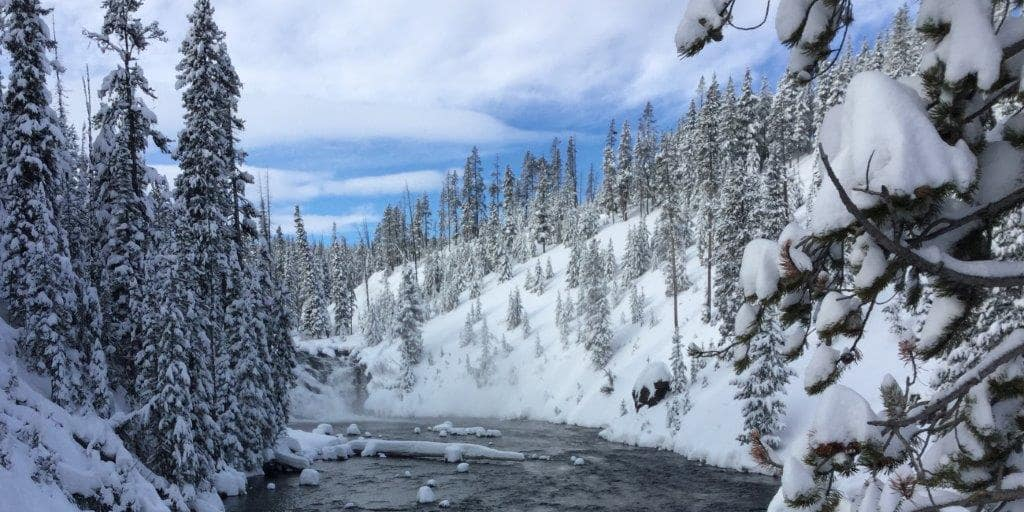 Pine trees stand on snow covered mountains that flank a creek