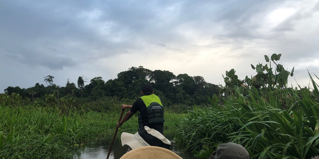 Man wearing a vest paddles a canoe with Guests through a marshy area of the Amazon