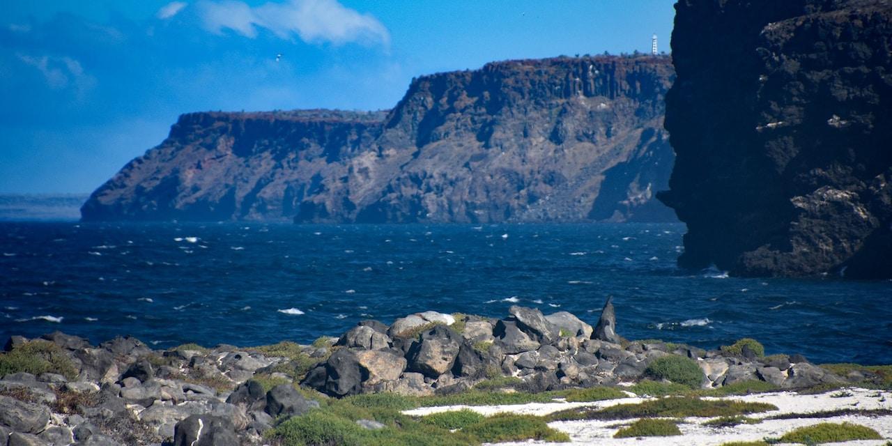 The rocky coastline of Mosquera Island