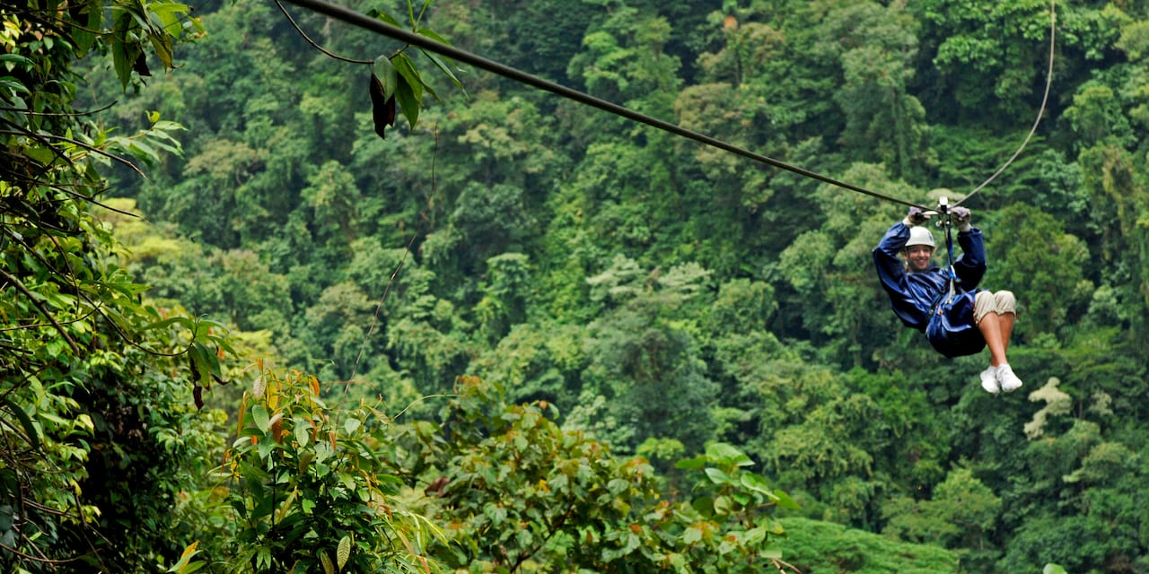 A tourist zip lines through the rainforest