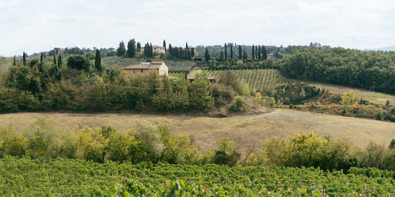 Farmhouses at the top of a hill surrounded by green farmland and fields in Tuscany