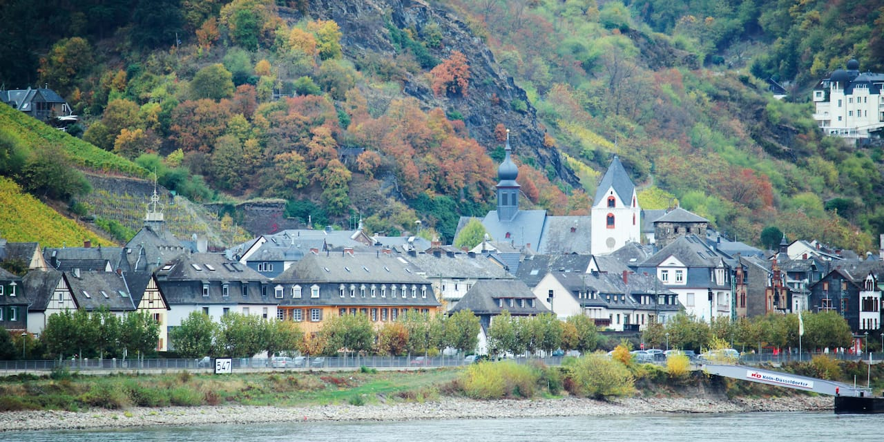 Buildings in the town of Rüdesheim, Germany nestled between the banks of the Rhine River and at the base of a tree lined hillside