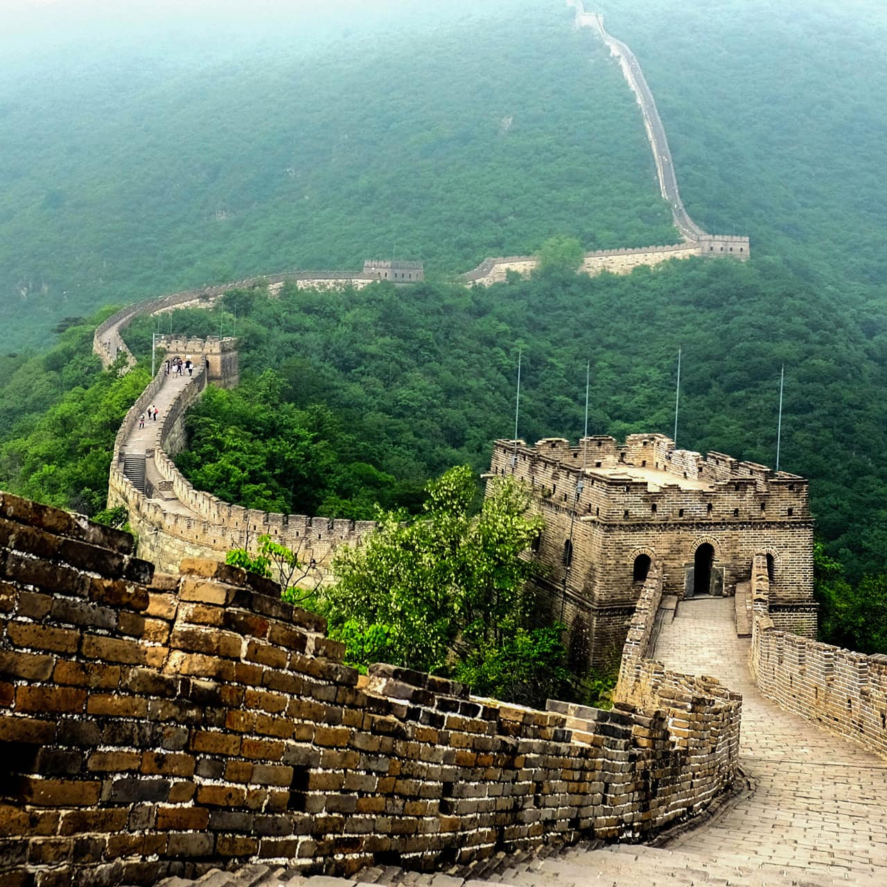 The Great Wall of China winds through a lush mountainside