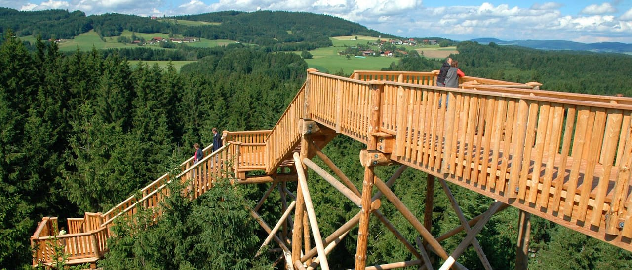 A large wooden structure above the treetops overlooking forests and pastures