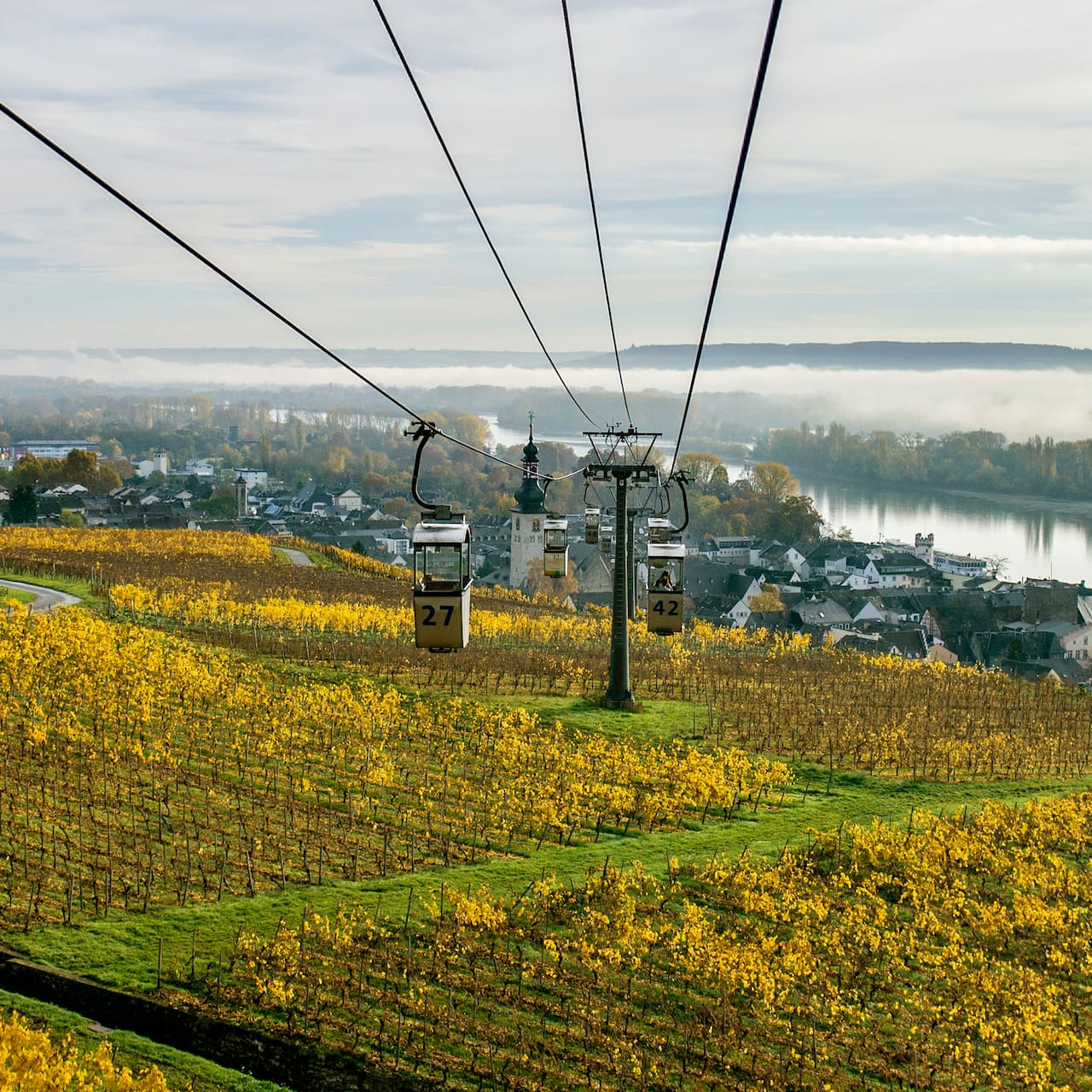 A gondola stretches out over a pastoral setting in Rüdesheim