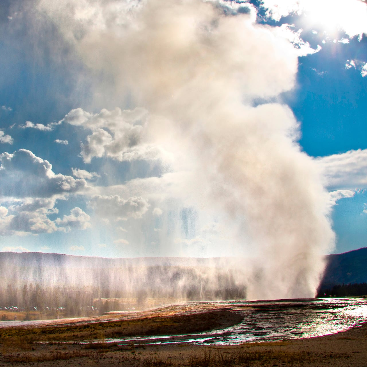 A geyser erupts at Yellowstone National Park