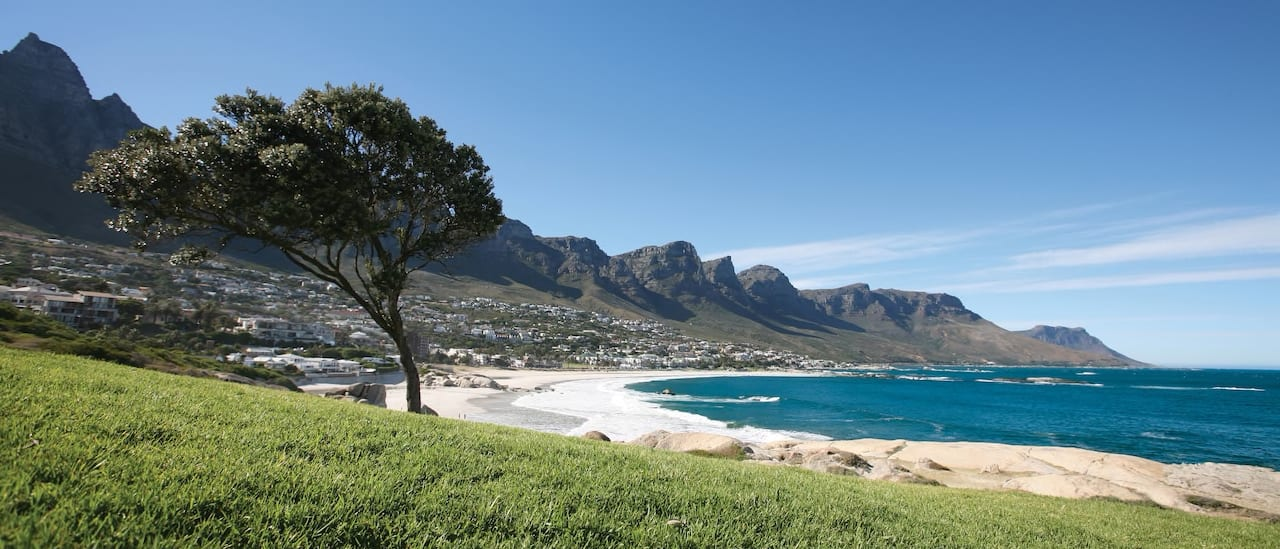 A coastline with white sand beach, hills and windswept trees