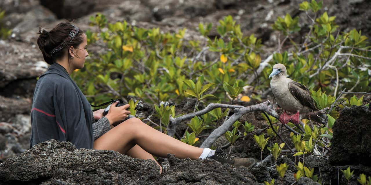 Girl sitting on lava rock with a camera in hand to photograph a red footed booby perched on a branch