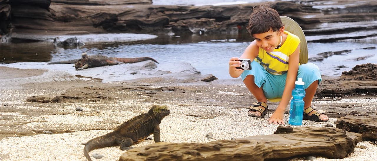 A boy holding a small camera squats on the shoreline to take a close-up picture of a marine iguana