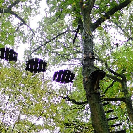 A ropes course in the tree tops at a tree climbing park in Rouen, France