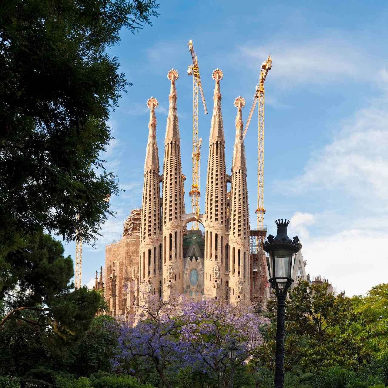 The whimsical spires of Gaudí's Sagrada Família in Barcelona loom above the treetops