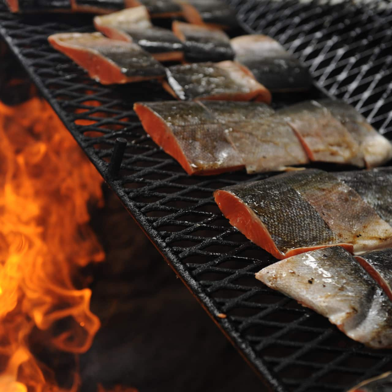 Salmon filets on a grill cook over a fire