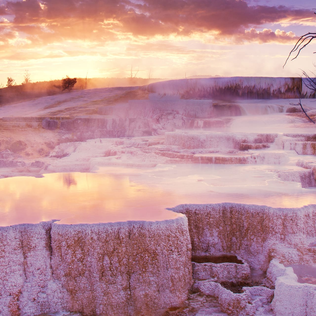 Limestone rock formations and hot springs at Mammoth Hot Springs Terraces