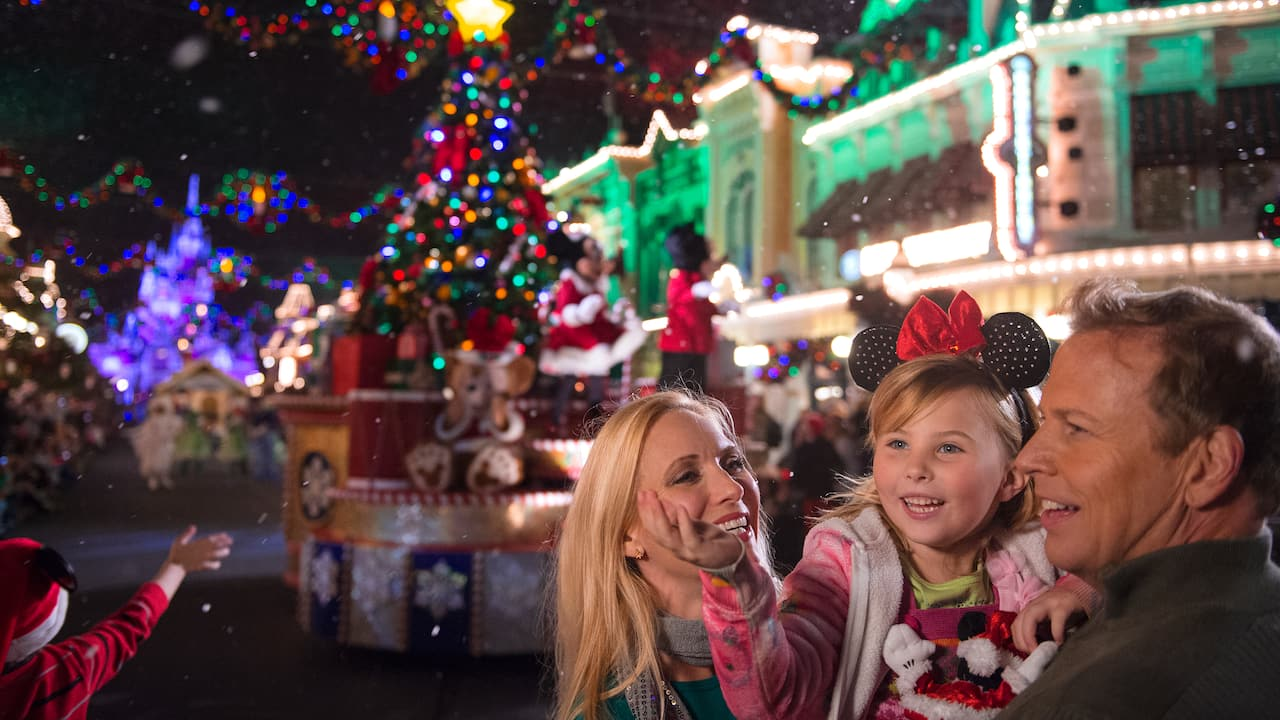 Make the most of your Walt Disney World Resort vacation with holiday magic, seasonal events and guided tours.