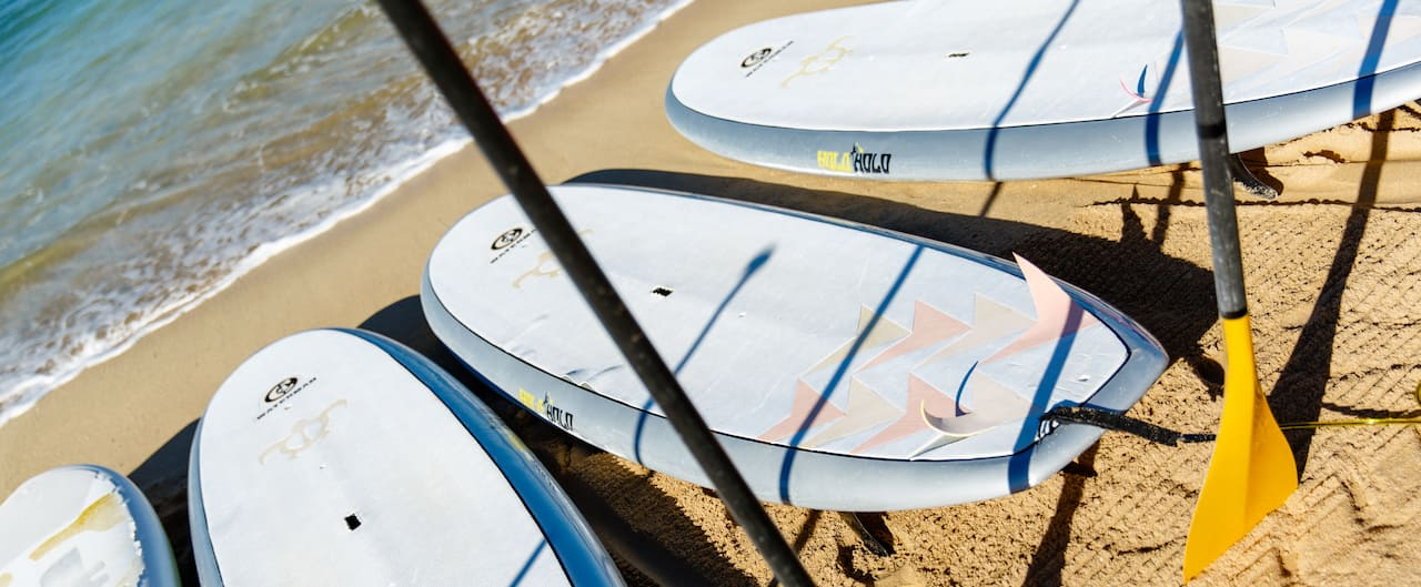 Four paddleboards with oars lined up on the sand at the water's edge